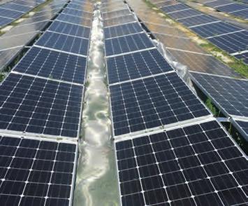 Verein Solarspar
